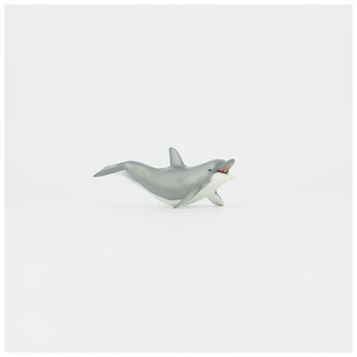 Playing Dolphin Toy