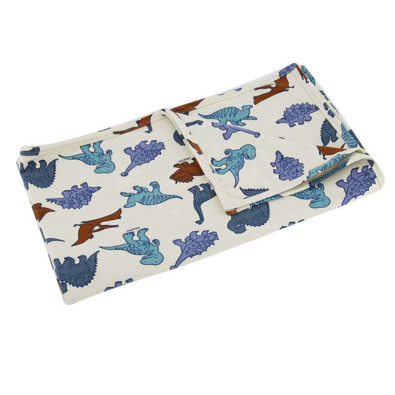 Baby Boys Dino Friends Blanket